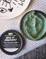 mat-na-lush-mask-of-magnaminty-review-2