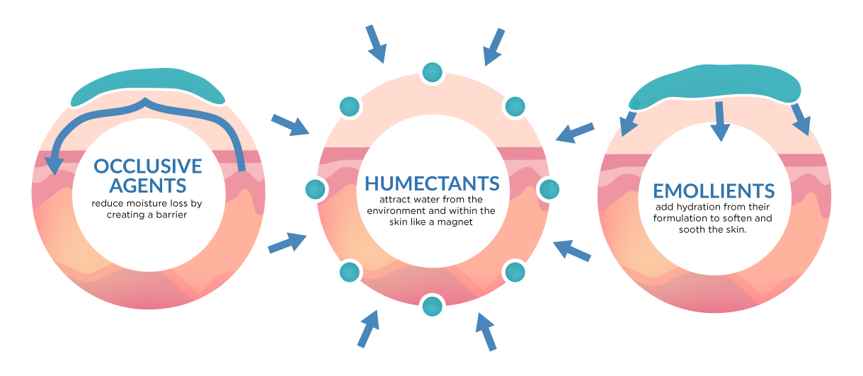 Image result for humectant