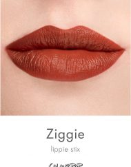 son-colourpop-lippie-stix-ziggie