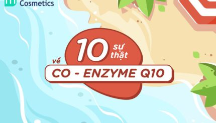 10-su-that-ve-co-enzyme-q10